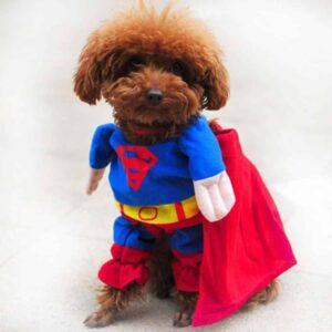 Superman Superhero Red & Blue with Cape Costume for Dog - Woof Apparel