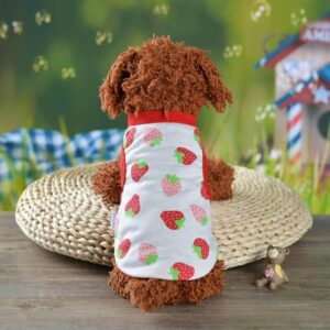 Sweet Strawberry Pattern Spring Outfit Puppy Tank Top - Woof Apparel