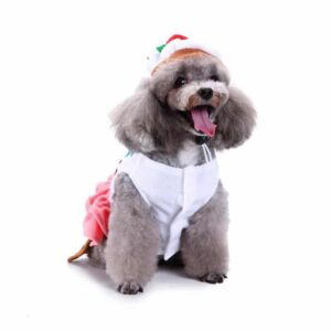 Sweet Cake Coat Costume for Dogs - Woof Apparel