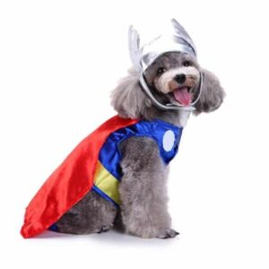 Adorable Thor Marvel Cosplay Outfit for Dogs - Woof Apparel