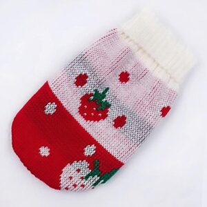 Strawberry Knitted Design Crochet Small Dog Sweater - Woof Apparel